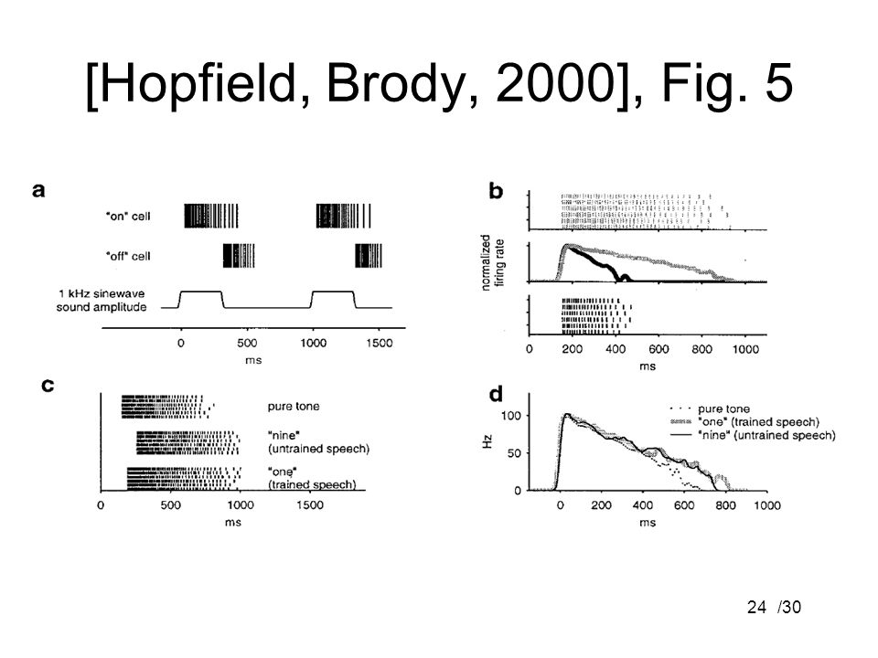 [Hopfield, Brody, 2000], Fig. 5 /30